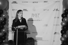 2020 AMEC Counsel of  the Year Awards